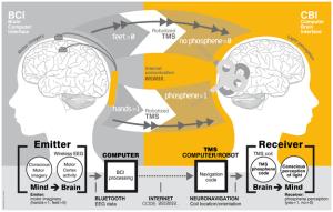 BrainToBrain
